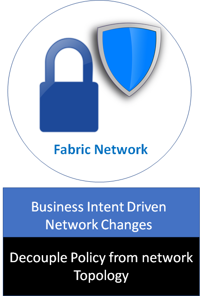 Cisco Fabric Network